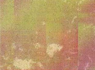 浅啡网 RY01-005