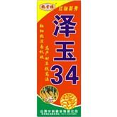 泽玉34-耐旱抗高温
